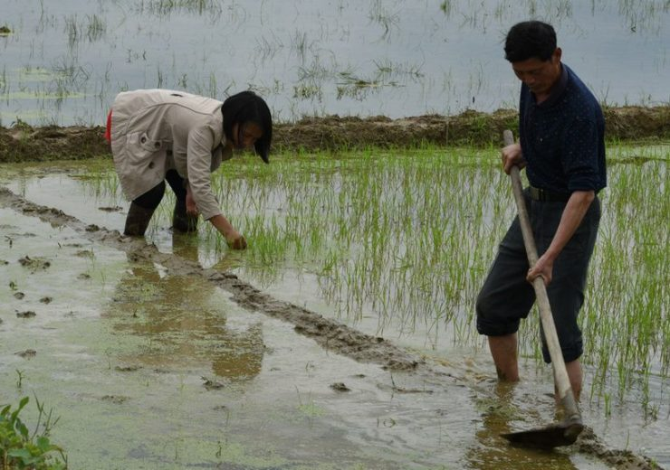 ADB funds $130m for project to trace food production chains in China