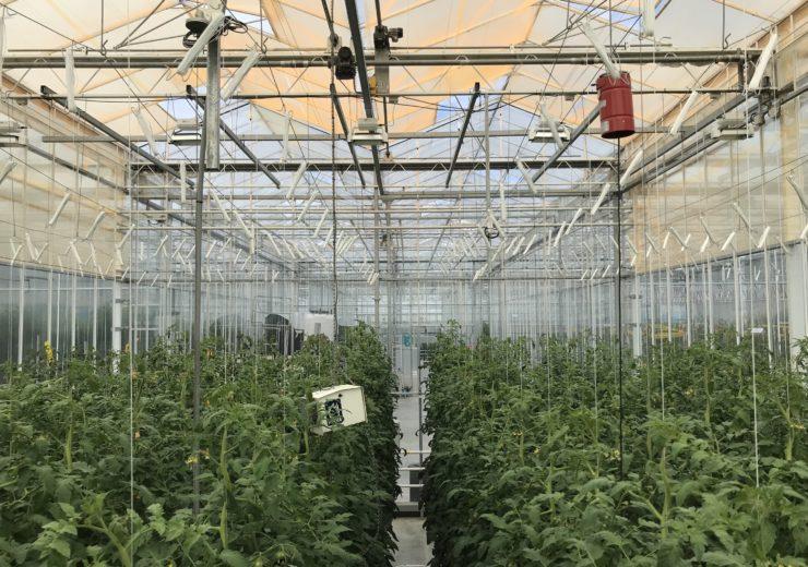 UbiQD quantum dot-enabled retrofit greenhouse UbiGro