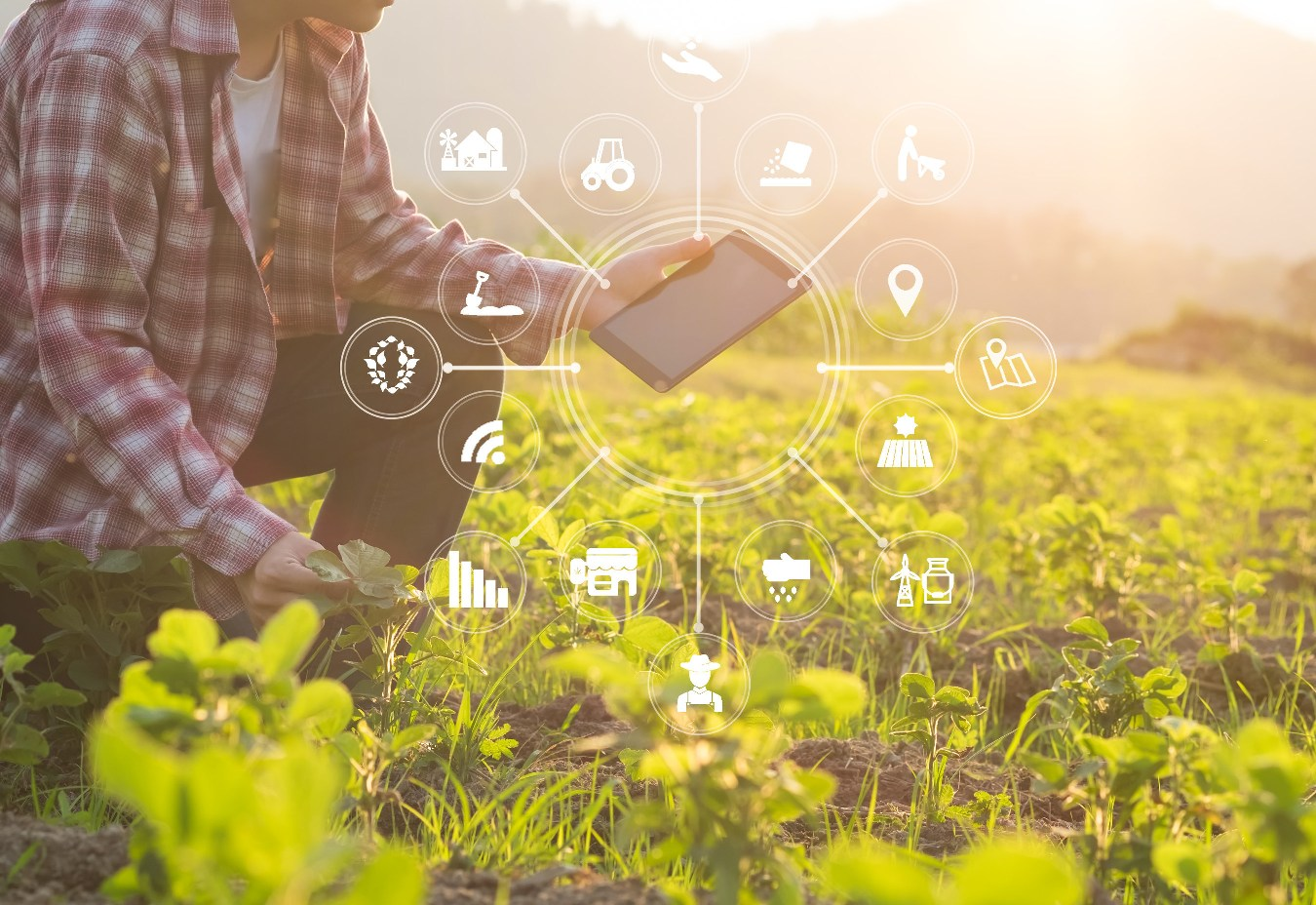 Image: Yara, IBM launch new platform for data exchange in the agriculture sector. (Credit: IBM/PR Newswire)