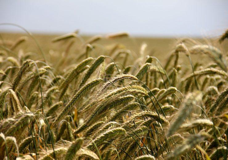 UK Environment Secretary reveals ELM scheme for future of greener farming