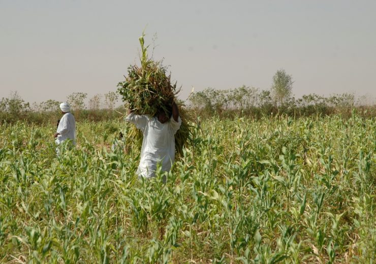 ADFD supports Sudan with $11m in agricultural supplies