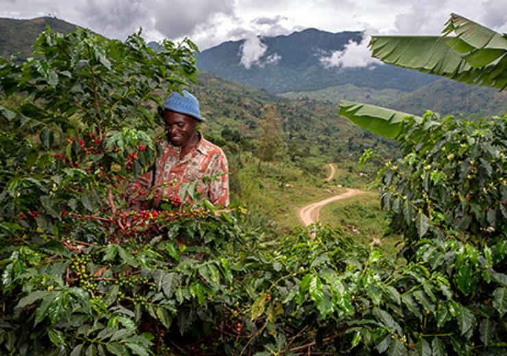 Nespresso introduces Ugandan coffee through Reviving Origins programme