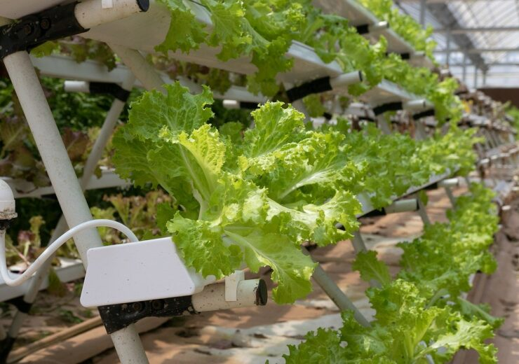Infarm secures $170m in funding to expand urban vertical farming network