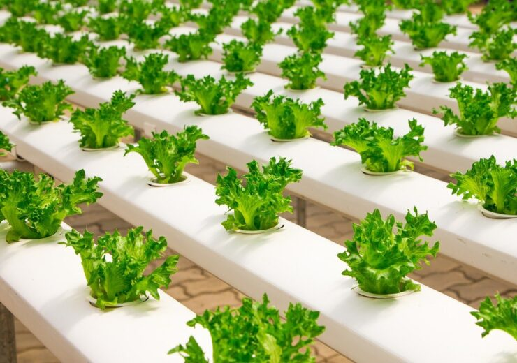 Grōv, AWS join hands to develop vertical farming data for growth of HDN animal feed